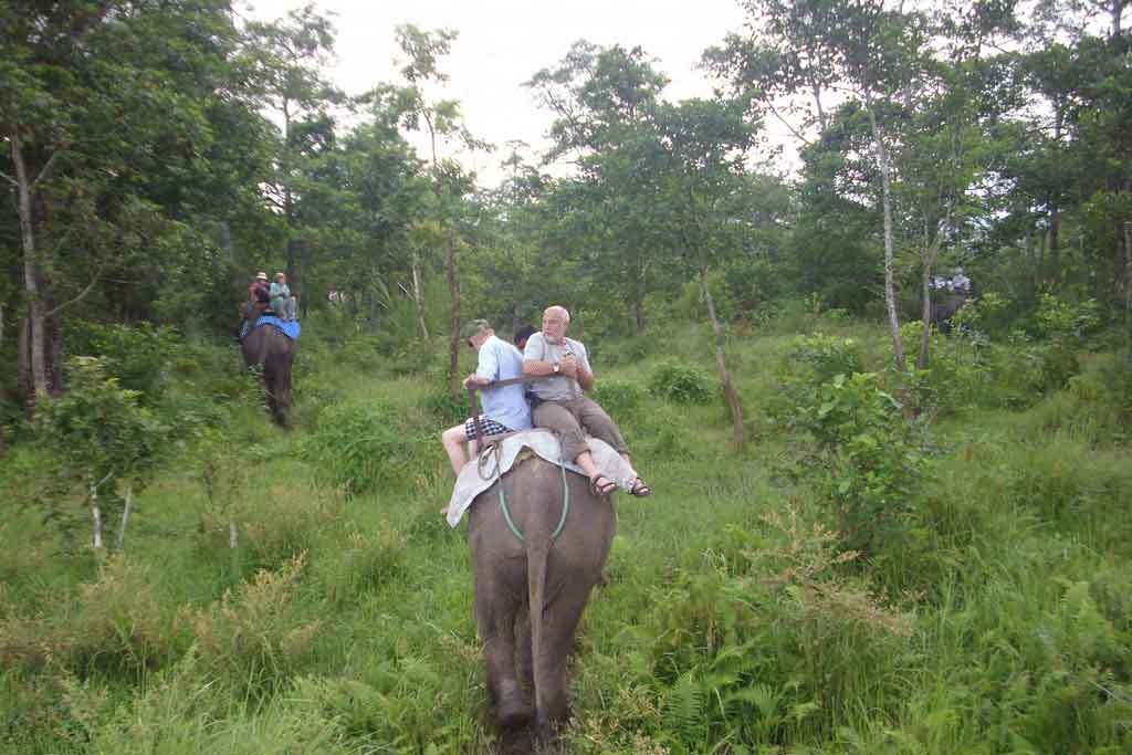 jungle-safari-tour