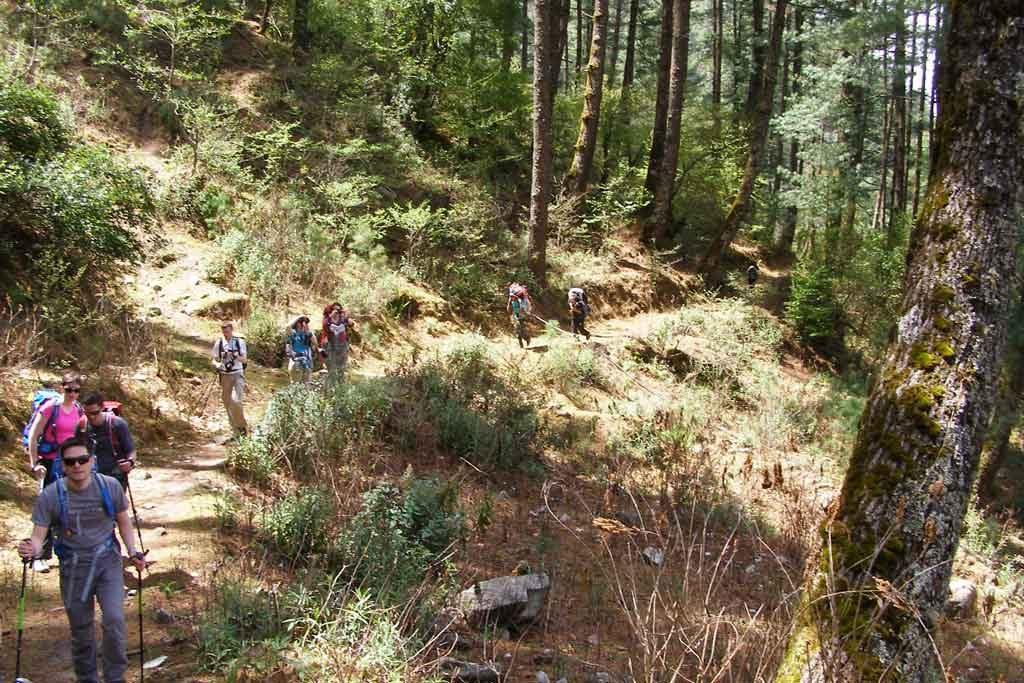 trekking-in-langtang