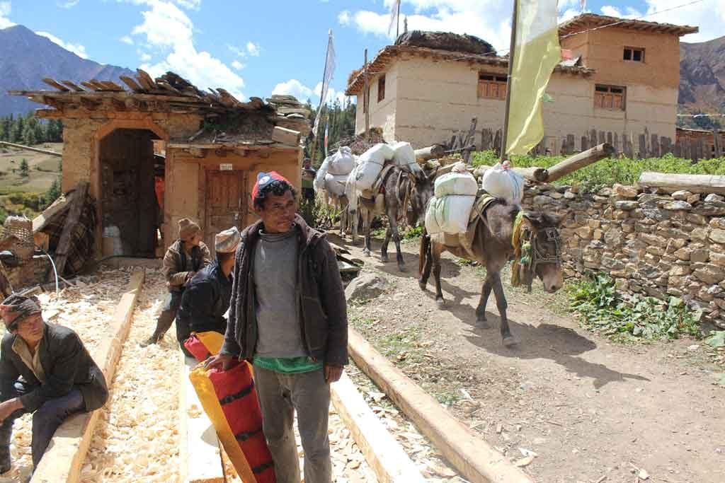 dolpo-village-life